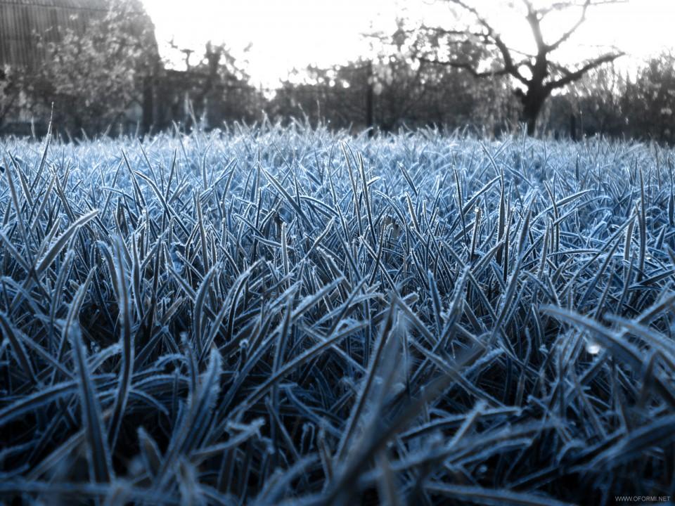Придутли заморозки вВолгодонск: МЧС предупреждает о вероятном  похолодании наДону